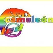 Logo C samotné